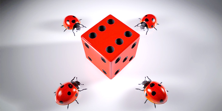 A dice showing the number 6, surrounded by 4 ladybirds