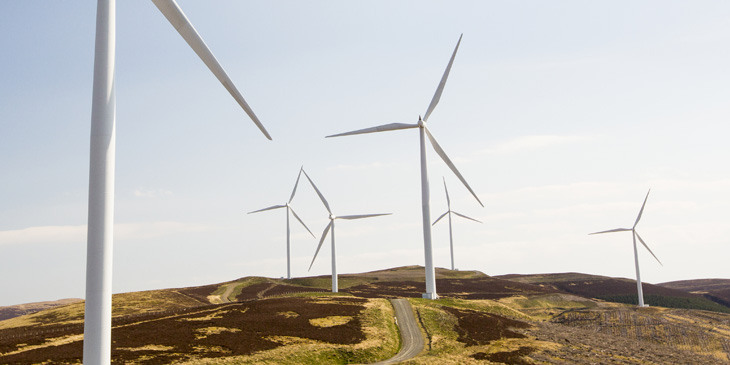 Country landscape with wind turbines scattered across