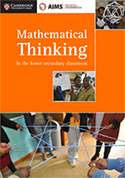 Maths thinking cover